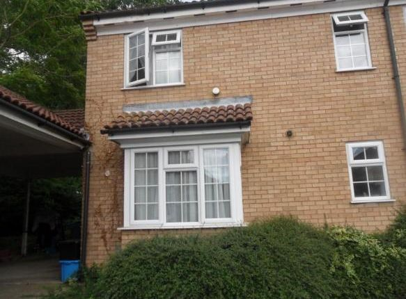 Thumbnail Detached house to rent in Providence Grove, Stevenage
