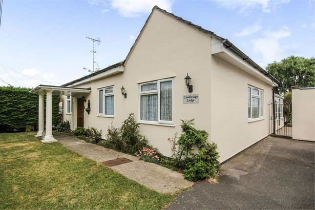 Thumbnail Detached bungalow for sale in Hertford Drive, Fobbing, Stanford-Le-Hope, Essex