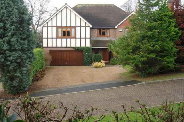 Thumbnail Detached house for sale in Ore Place, Hastings