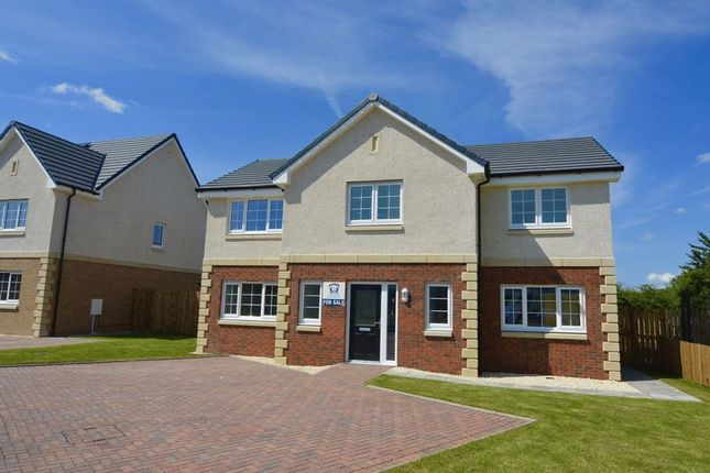 Thumbnail Property for sale in Plot 12, The Culzean, Cairn Manor, Cumnock