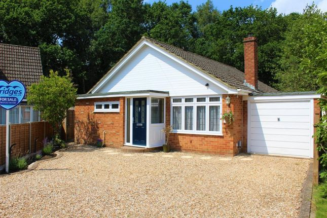 Thumbnail Bungalow for sale in Robin Close, Ash Vale