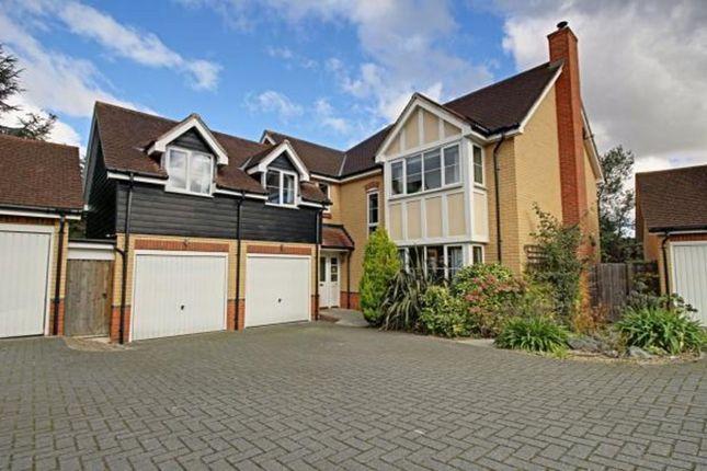 Thumbnail Detached house to rent in Ellis Close, Hoddesdon