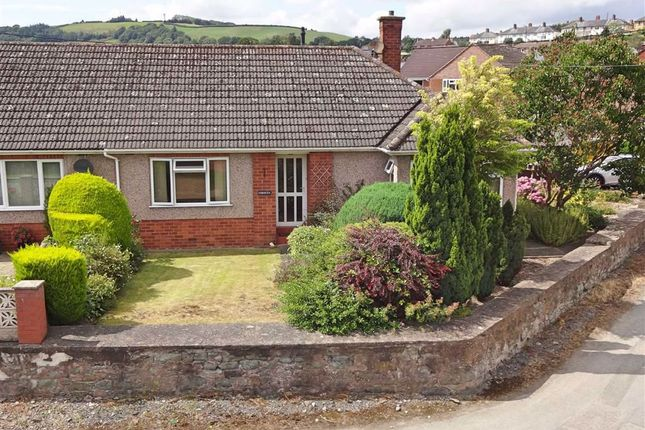 Thumbnail Bungalow for sale in Fernlea, Dolafon Road, Dolafon Road, Newtown, Powys