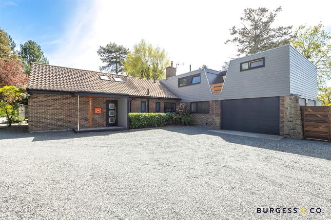 4 bed detached bungalow for sale in Birchington Close, Bexhill-On-Sea TN39