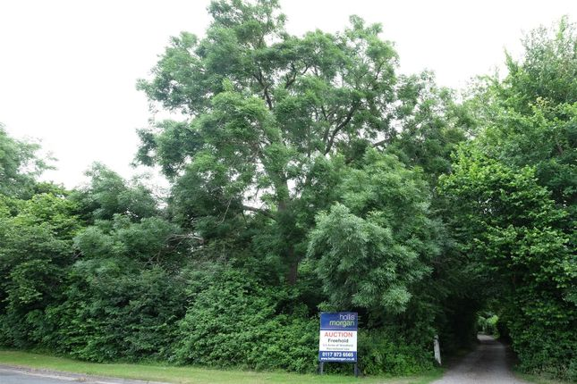 Dscf4585 - Main of Nowhere Lane, Trendlewood Way, Nailsea, Bristol BS48