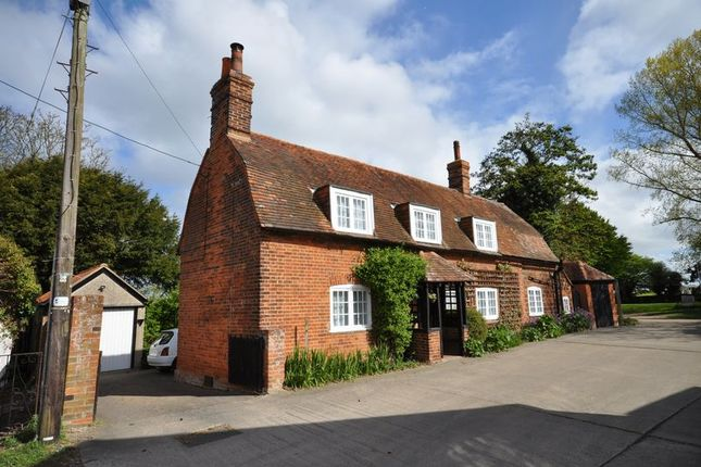 Thumbnail Cottage for sale in Vine Cottage, The Lane, West Mersea