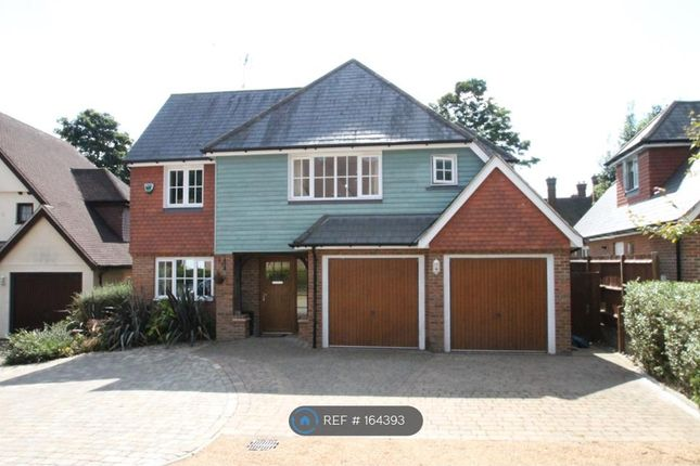 Thumbnail Detached house to rent in Abberley Park, Maidstone Kent