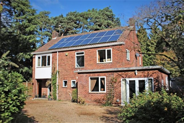 Thumbnail Detached house for sale in Pine Walk, Chilworth, Southampton