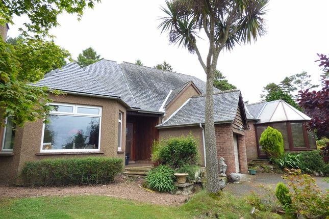 Thumbnail Bungalow for sale in Balchristie, Colinsburgh, Fife