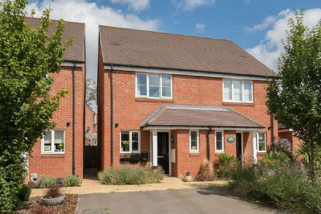 Thumbnail Semi-detached house for sale in Chalk Stream Rise, Amersham