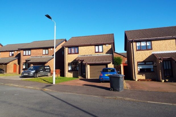Thumbnail Detached house to rent in Galloway Avenue, Hamilton