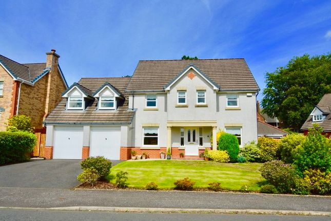 Thumbnail Detached house for sale in Doonview Gardens, Doonfoot, Ayr