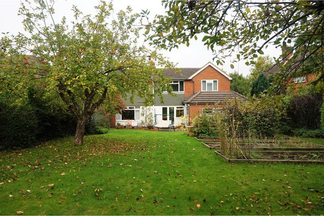 Thumbnail Detached house for sale in Broomleaf Road, Farnham