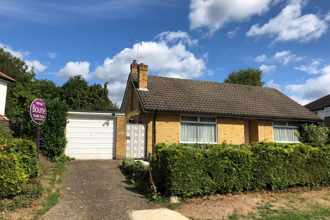 Thumbnail Detached bungalow for sale in Turnoak Avenue, Hook Heath, Woking