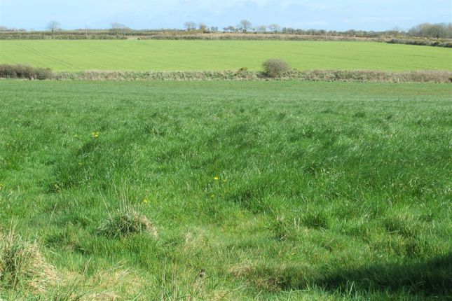 Img_2671 of 25.01 Acres Of Agricultural Land, Mathry, Haverfordwest SA62