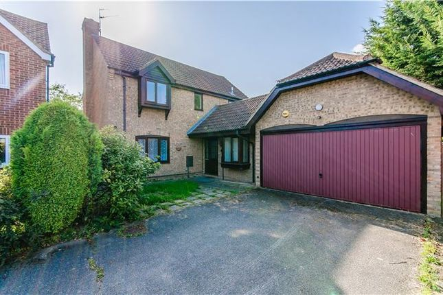 Thumbnail Detached house for sale in Harebell Close, Cherry Hinton, Cambridge