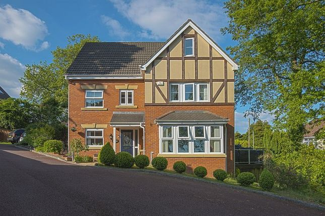 Thumbnail Detached house for sale in Nant Coch Rise, Newport