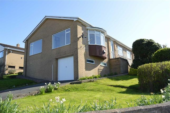 Thumbnail Detached house to rent in 31, Churchill Drive, Newtown, Powys