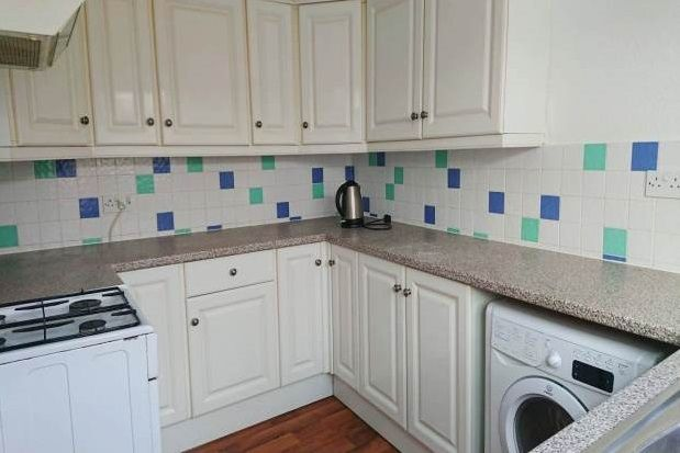 Thumbnail Terraced house to rent in Ilbert Street, Plymouth