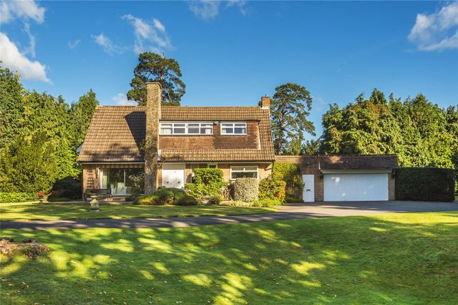 Thumbnail Detached house for sale in Bishops Walk, Shirley Hills, Surrey