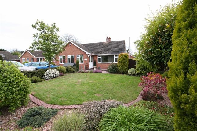 Thumbnail Detached bungalow for sale in Top Street, East Drayton, Retford