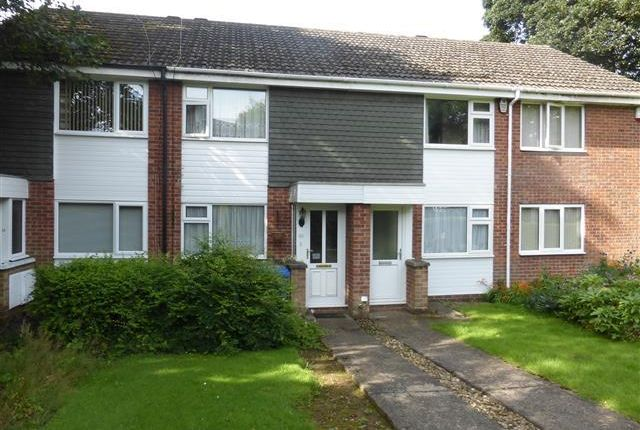 Thumbnail Terraced house to rent in Sedgefield Green, Mickleover, Derby