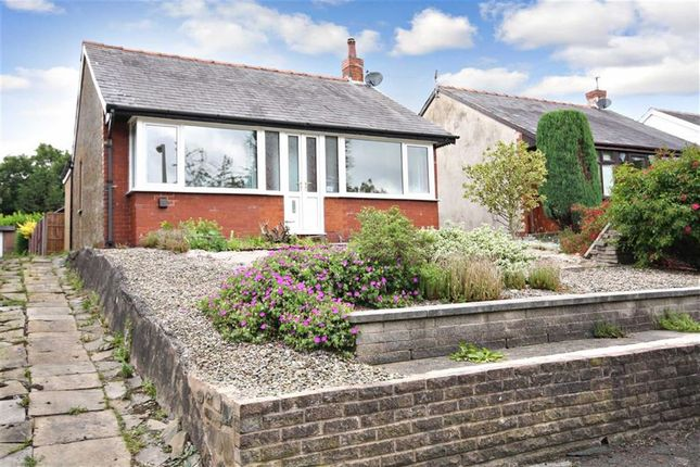 Thumbnail Detached bungalow to rent in Liverpool Road, Preston