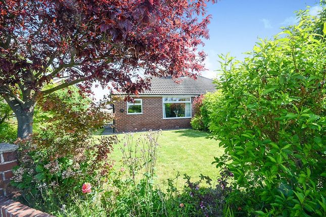 Thumbnail Bungalow for sale in Carmires Avenue, Haxby, York