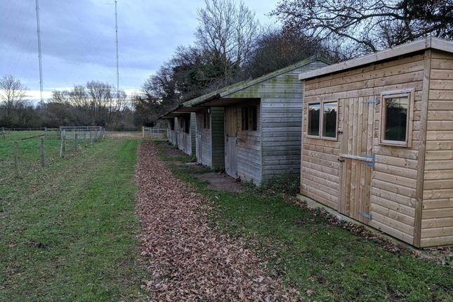 Thumbnail Land to rent in Colley Pits Lane, Wychbold