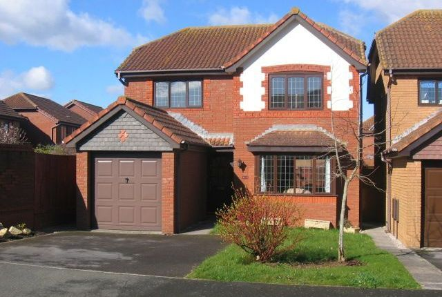 Berrybrook Meadow, Exminster, Exeter EX6