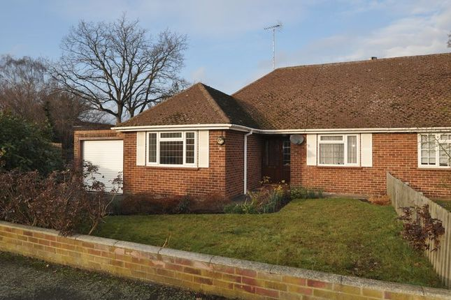 Thumbnail Bungalow to rent in Milden Gardens, Frimley Green, Camberley