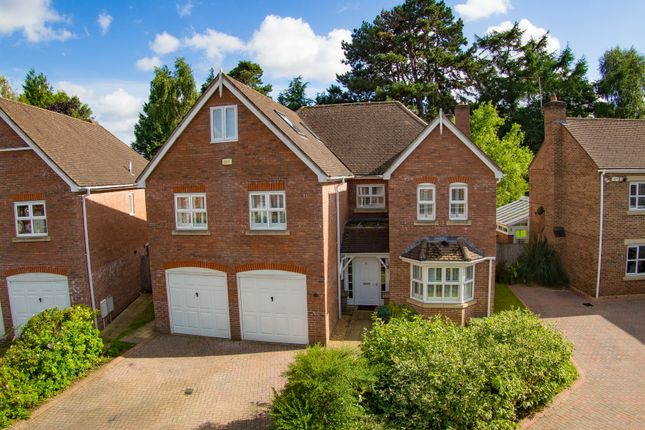 Thumbnail Detached house for sale in Marden Way, Petersfield, Hampshire
