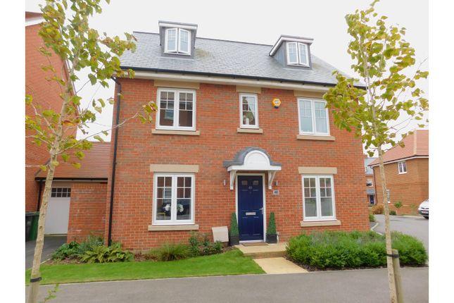 Thumbnail Detached house for sale in Reid Crescent, Hailsham