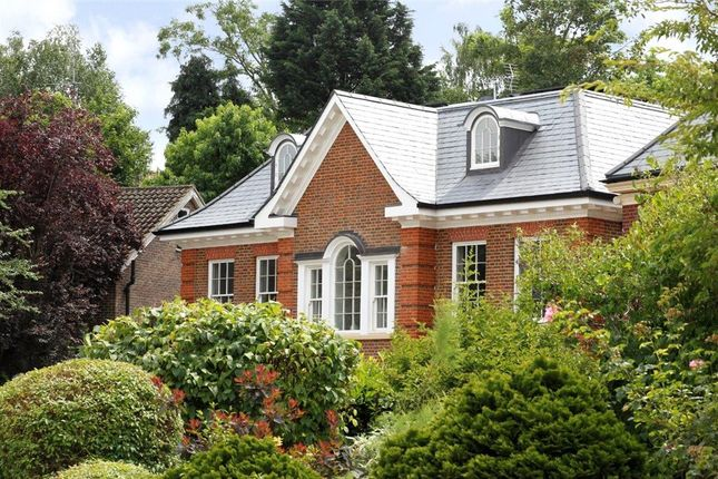 Thumbnail Detached house for sale in Deepdale, Wimbledon