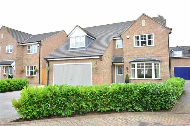 Thumbnail Detached house for sale in Chapel Close, Howden, Goole