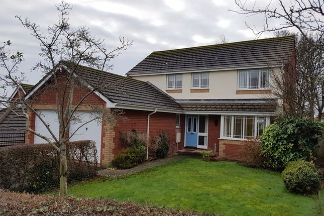Thumbnail Detached house to rent in Ryalls Court, Seaton