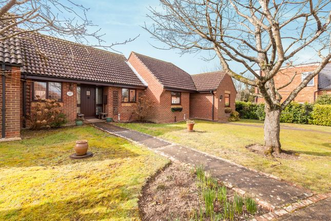 Thumbnail Terraced bungalow for sale in The Cedars, Hailsham