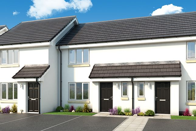 """Thumbnail Terraced house for sale in """"The Glamis"""" at Standford Hall, Main Street, Cambuslang, Glasgow"""