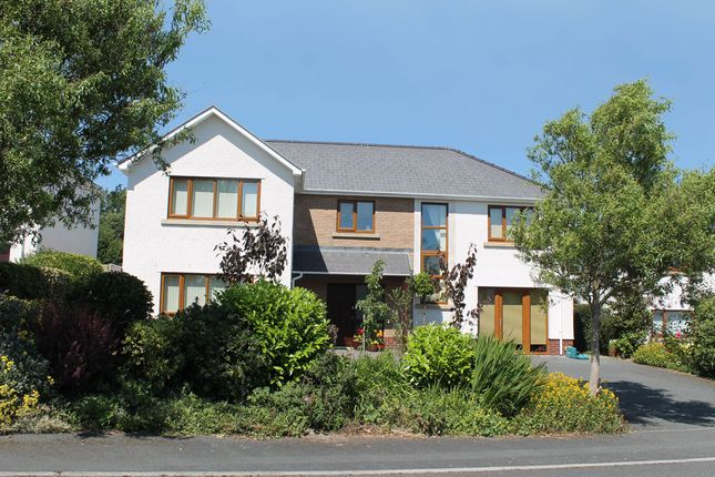 Thumbnail Detached house to rent in Cae'r Wylan, Aberystwyth