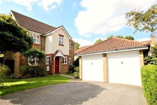 Thumbnail Detached house to rent in Rockery Close, Dibden, Southampton