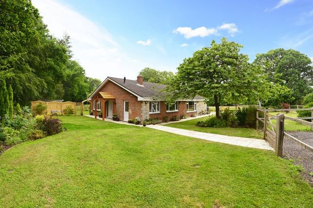 Thumbnail Detached bungalow for sale in Highwood, East Stoke BH20.