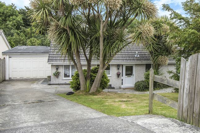 Thumbnail Bungalow to rent in Park Way, St. Austell