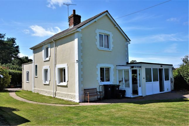 Thumbnail Detached house for sale in Mappowder, Sturminster Newton