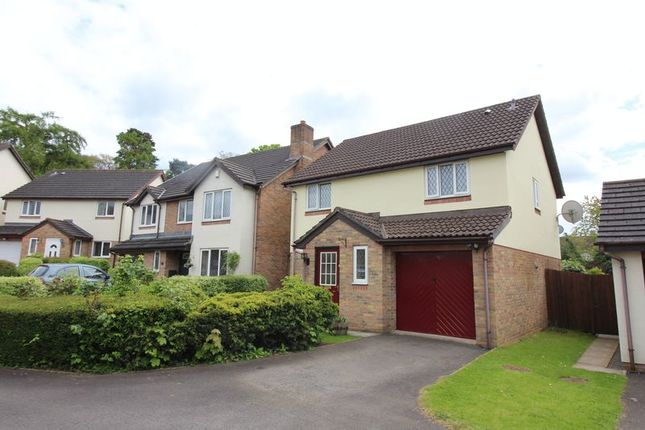 Thumbnail Detached house for sale in Ostringen Close, Abergavenny