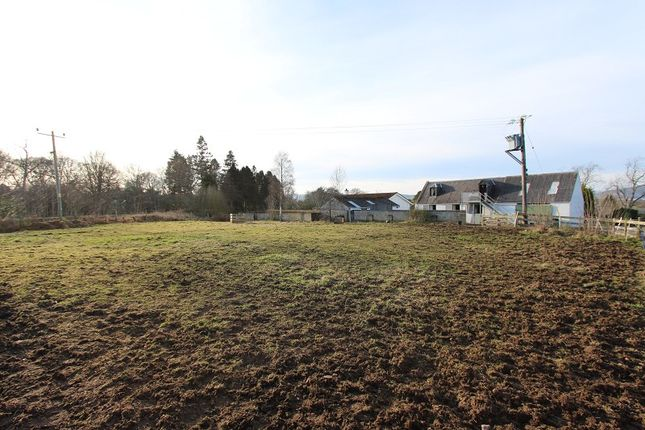 Paddock 1 of Barnsdale 12 Resaurie, Inverness IV2