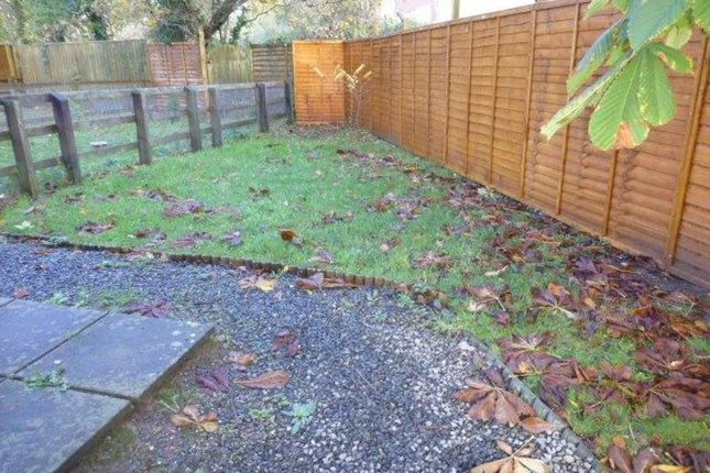 Garden of Burgess Meadows, Johnstown, Carmarthen SA31