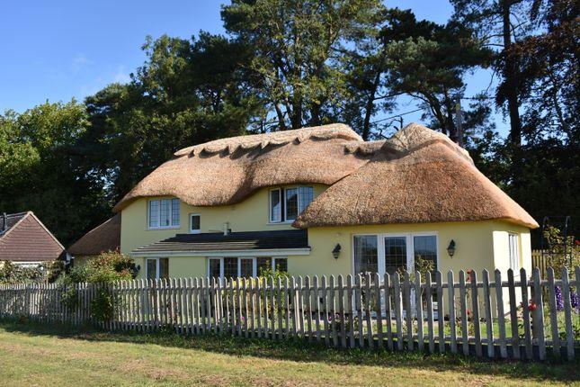 Thumbnail Detached house for sale in Pidney, Hazelbury Bryan, Sturminster Newton