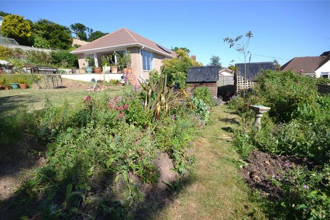 Rear Garden of Meadow Close, Budleigh Salterton, Devon EX9