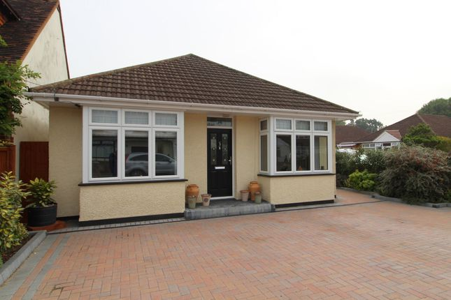 Thumbnail Detached bungalow to rent in Chalmers Road, Ashford