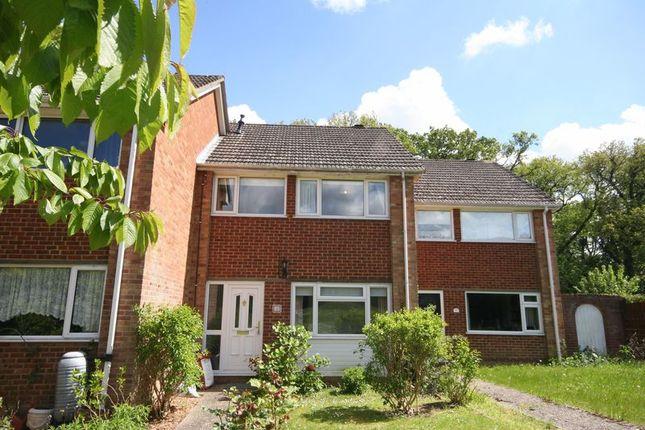 Thumbnail Room to rent in Whitmore Green, Farnham